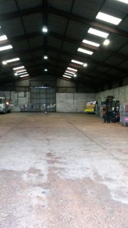 pallet storage Exeter
